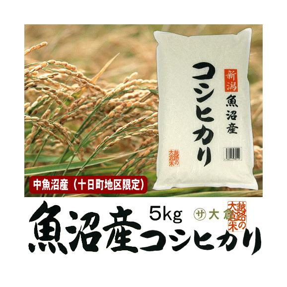 中魚沼産コシヒカリ(令和2年産)5kg(十日町地区限定米)【送料無料(本州のみ)】01