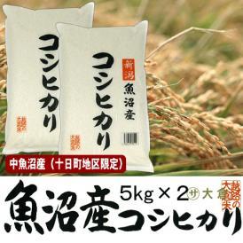 中魚沼産コシヒカリ(令和2年産)10kg(十日町地区限定米)【送料無料(本州のみ)】
