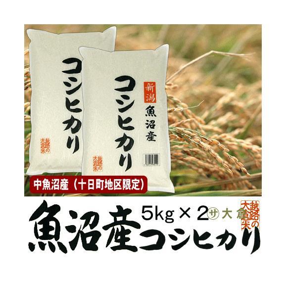 中魚沼産コシヒカリ(令和元年産)10kg(十日町地区限定米)【送料無料(本州のみ)】01
