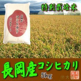 〔特別栽培米〕新潟県産コシヒカリ(長岡産) 5kg(平成30年産)【送料無料(本州のみ)】