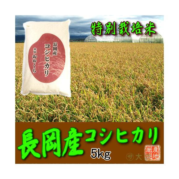 〔特別栽培米〕新潟県産コシヒカリ(長岡産) 5kg(令和2年産)【送料無料(本州のみ)】01