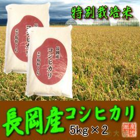 〔特別栽培米〕新潟県産コシヒカリ(長岡産) 10kg(平成30年産)【送料無料(本州のみ)】