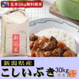 【精米無料】新潟県産こしいぶき(玄米)30kg 令和2年産【送料無料(本州のみ)】