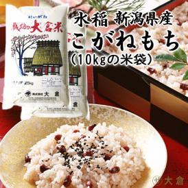 新米(もち米)新潟県産こがねもち(平成29年産)5kg×2袋【送料無料(本州のみ)】