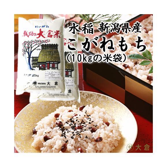 (もち米)新潟県産こがねもち(令和2年産)5kg×2袋【送料無料(本州のみ)】01