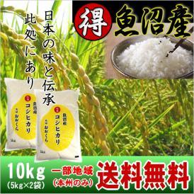 魚沼産コシヒカリ (特選) 10kg(5kg×2袋)(令和元年産)【送料無料(本州のみ)】