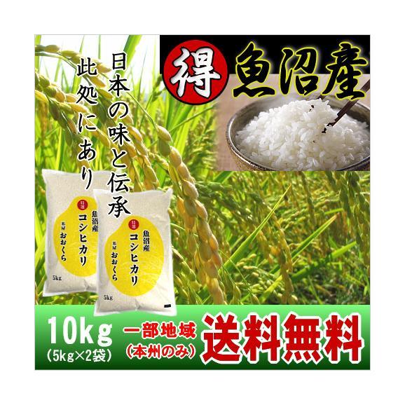 魚沼産コシヒカリ (特選) 10kg(5kg×2袋)(令和元年産)【送料無料(本州のみ)】01