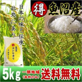 魚沼産コシヒカリ (特選) 5kg(平成30年産)【送料無料(本州のみ)】