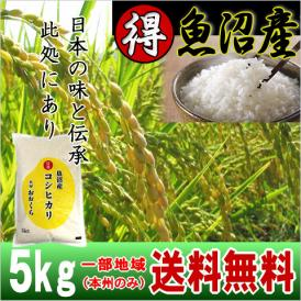 魚沼産コシヒカリ (特選) 5kg(令和元年産)【送料無料(本州のみ)】