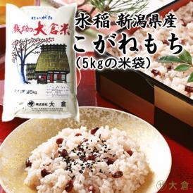 (もち米)新潟県産こがねもち(令和3年産)1kg 【10kg以上の同梱で送料無料】