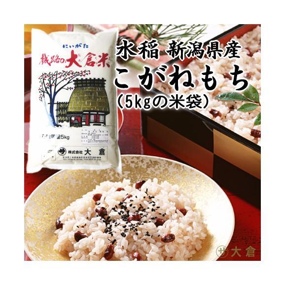 (もち米)新潟県産こがねもち(令和2年産)1kg 【10kg以上の同梱で送料無料】01