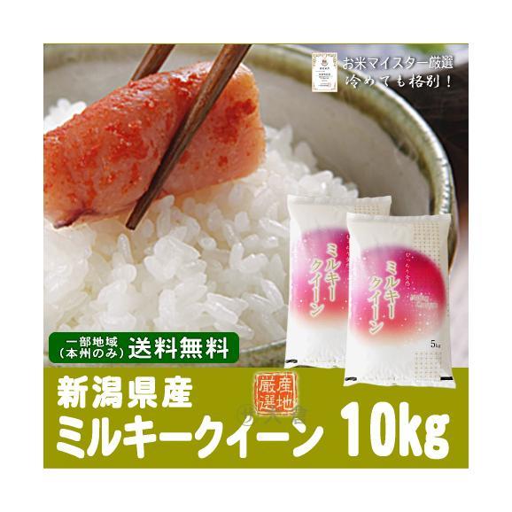 新潟県産ミルキークイーン(令和元年)10kg(5kg×2袋)【送料無料(本州のみ)】01