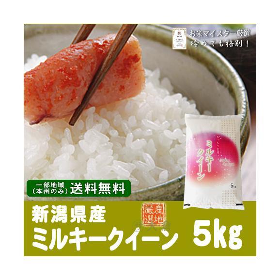 新潟県産ミルキークイーン(令和元年)5kg【送料無料(本州のみ)】01