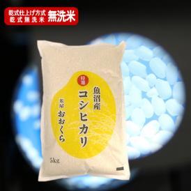 【無洗米(乾式)】魚沼産コシヒカリ (特選) 5kg(令和元年産)【送料無料(本州のみ)】