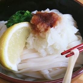 【送料無料】本場讃岐うどん 平打ち麺 1kg (代金引換-後払い不可・着日指定不可)