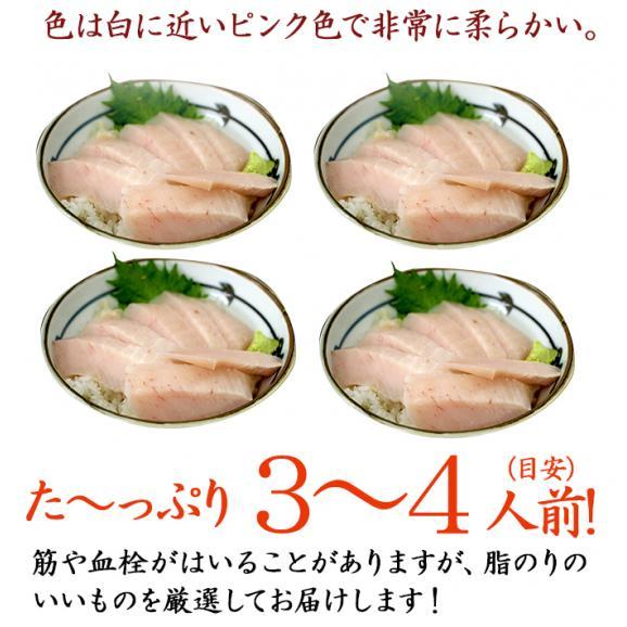<びんとろマグロ刺身500g(びんちょう鮪・まぐろ)>瞬間冷凍!【冷凍便同梱可】02