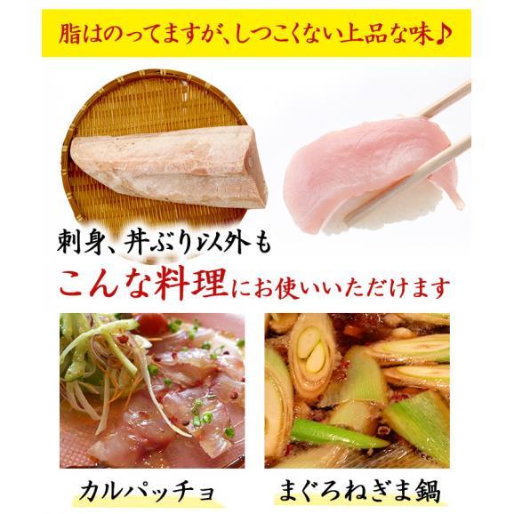 <びんとろマグロ刺身500g(びんちょう鮪・まぐろ)>瞬間冷凍!【冷凍便同梱可】04