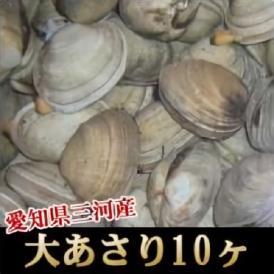 <大あさり10ヶ>巨大!愛知県三河産名物!【冷凍便・冷蔵便同梱可】