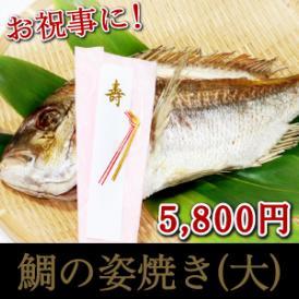<鯛の姿焼き>大サイズ!お祝いに!【冷凍・冷蔵同梱可】【母の日ギフト】