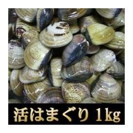 <活はまぐり(ハマグリ・蛤)1kg>お吸い物、酒蒸し、天ぷらに!【冷凍便・冷蔵便同梱可】