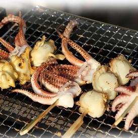 <2セット以上購入で送料無料 4種の海鮮串焼きセット 各4本計16本>キャンプに、海鮮BBQに、おでんに、晩酌に!【冷凍便/同梱可】【いいたこ串、つぶ貝串、、げぞ串、ほたて串】【ギフトにも】