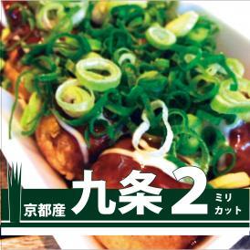 【メニューにこだわりたい!家庭でも九条ねぎが食べたい方必見!】うどん・蕎麦などの麺類の薬味に!たこ焼き・焼きそばの上のせに最適 2ミリカットねぎ 1kg