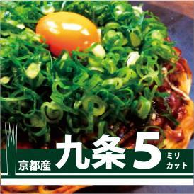 【メニューにこだわりたい!家庭でも九条ねぎが食べたい方必見!】お好み焼き・ねぎ焼き等に入れて確かな食感と風味を実感 九条ねぎ5ミリカット 1kg