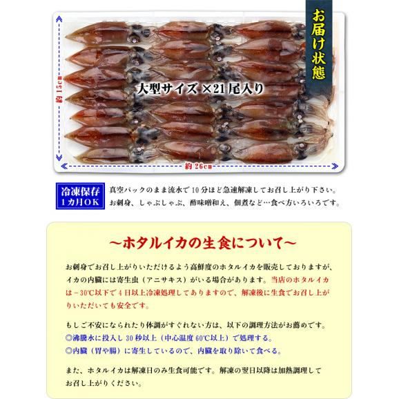 日本海富山湾の一級品!お刺身用ほたるいか大サイズ×21尾入り【ほたるいか】【ホタルイカ】【蛍烏賊】02