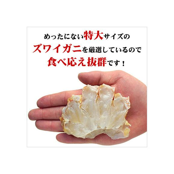 生ズワイガニ肩肉ハーフカット1kg[送料無料](他商品と同梱OK)02