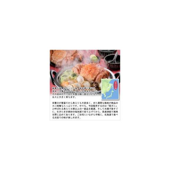 特大ボイル毛蟹/姿800g前後×2尾[送料無料]【けがに】【ケガニ】【毛かに】【毛カニ】03