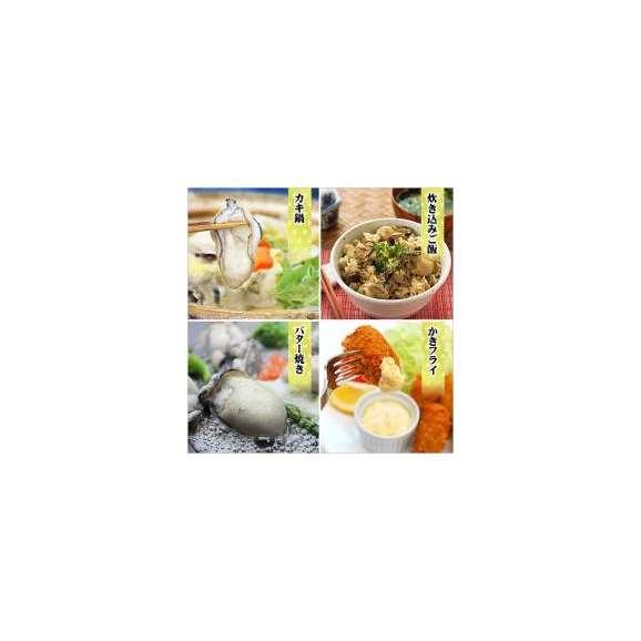 【徳用】ジャンボ広島かき2kg(1kg×2袋)[送料無料]※他商品と同梱OK【カキ】【牡蠣】【かき】あす着03