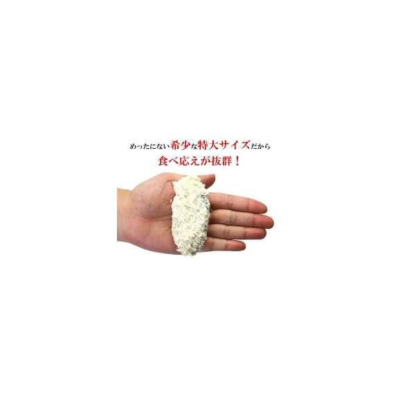 広島県産かきフライ450g(45g×10粒)【カキ】【牡蠣】【かき】【フライ】02