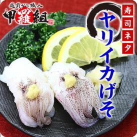 \寿司ネタ用/ヤリイカげそ(10g×20枚入り)【いか】【イカ】【烏賊】【イカゲソ】