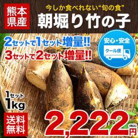 熊本県産 朝掘り たけのこ 1kg 送料無料 クール便 2セット分購入で1セット分増量 3セット購入で2セット分増量 《4月中旬-5月上旬頃より順次出荷》