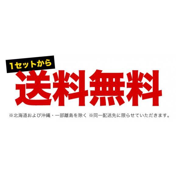 訳あり はるか 1.5kg 熊本県産 送料無料 柑橘 みかん ※複数購入の場合1箱におまとめ配送 2セット購入で1セット分増量 《7-14営業日以内に出荷予定(土日祝日除く)》03