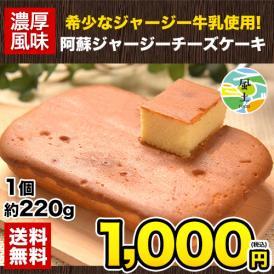 阿蘇 ジャージー チーズケーキ 1個 希少 な ジャージー牛乳使用 送料無料 スイーツ 11月中旬〜11月下旬頃より発送予定
