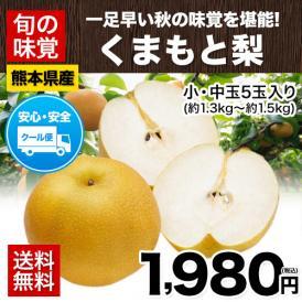 【送料無料】梨の名産地・熊本県産 くまもと梨 約1.3kg~約1.5kg(小・中玉5玉入)【クール便】《8月中旬-9月上旬頃より順次出荷》