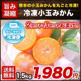 熊本県産 小玉 冷凍みかん みかん 1.5kg 500g×3袋 送料無料 2s~3s 2s 3sサイズ 2セット購入で1セット増量 《1-5営業日以内に出荷予定(土日祝日除く)》