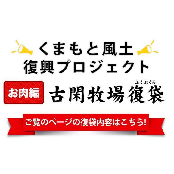日本復興プロジェクト ふっこう 福袋 復袋 熊本名産 馬肉7種セット復袋 純国産 コロナに負けない お肉 馬刺し 復興袋 送料無料 《5月末頃-6月中旬頃より順次出荷》02