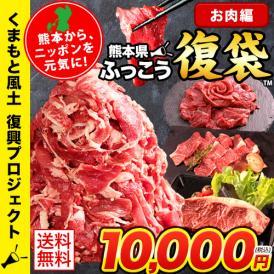 日本復興プロジェクト ふっこう 復袋 お肉復袋 4品目 コロナに負けない 黒毛和牛 冷凍 九州産 福袋 復袋 送料無料 6月中旬-7月上旬頃出荷