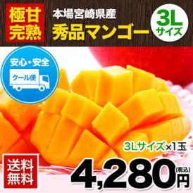 本場宮崎県産 完熟マンゴー 1玉(3Lサイズ) 秀品 《7-14営業日以内に発送予定》