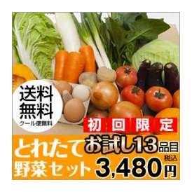 熊本のとれたて野菜セットおためし13品目
