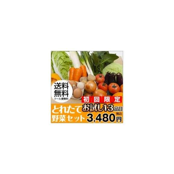 熊本のとれたて野菜セットおためし13品目01