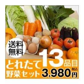 熊本のとれたて野菜セット13品目【送料無料】