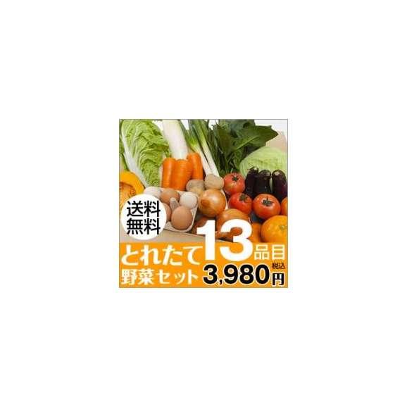 熊本のとれたて野菜セット13品目【送料無料】01