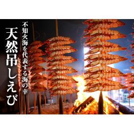 《満天☆青空レストランで紹介》みやもと海産物 天然吊しえび(アシアカエビ)10尾入り 熊本県芦北産