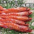 《満天☆青空レストランで紹介》みやもと海産物 天然アシアカエビの味噌漬400g 熊本県芦北 えび