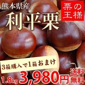 栗 利平栗 送料無料 幻の高級和栗  生栗 秀品 約1.8kg 熊本県産 3箱購入で1箱おまけ くり クリ