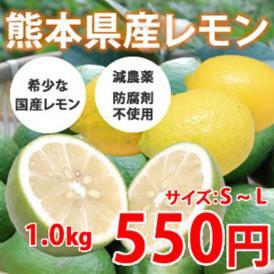 希少な国産レモン! 熊本県三角産レモン 1kg