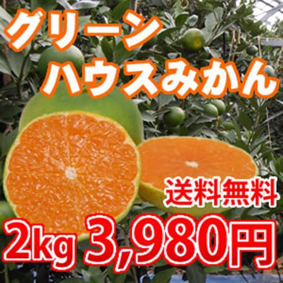 【送料無料】熊本県植木産グリーンハウスみかん2kg(20~30玉入り)01